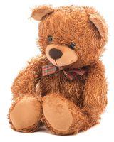"""Мягкая игрушка """"Медведь Рома"""""""