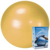 Мяч гимнастический 55 см (оранжевый)